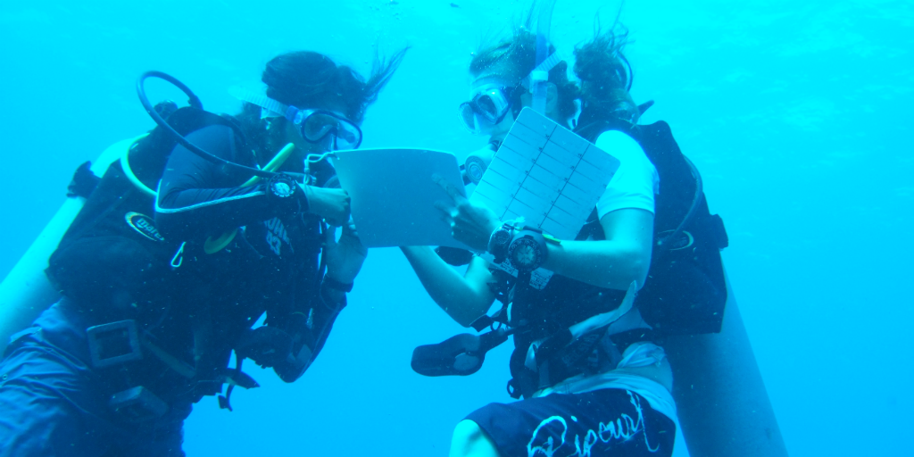 marine conservation diving teen