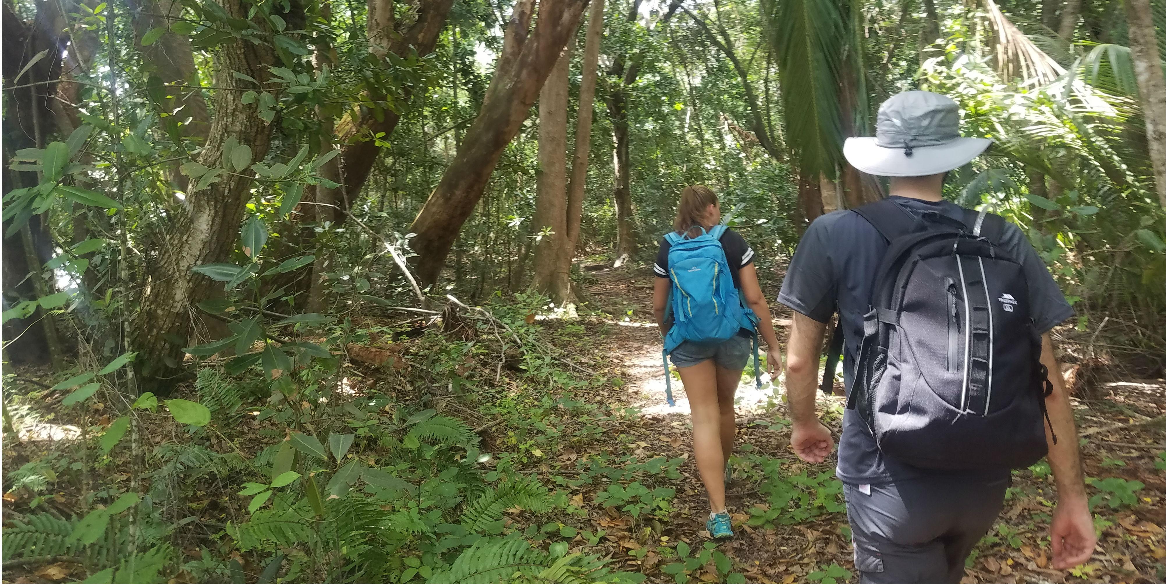 wildlife volunteering