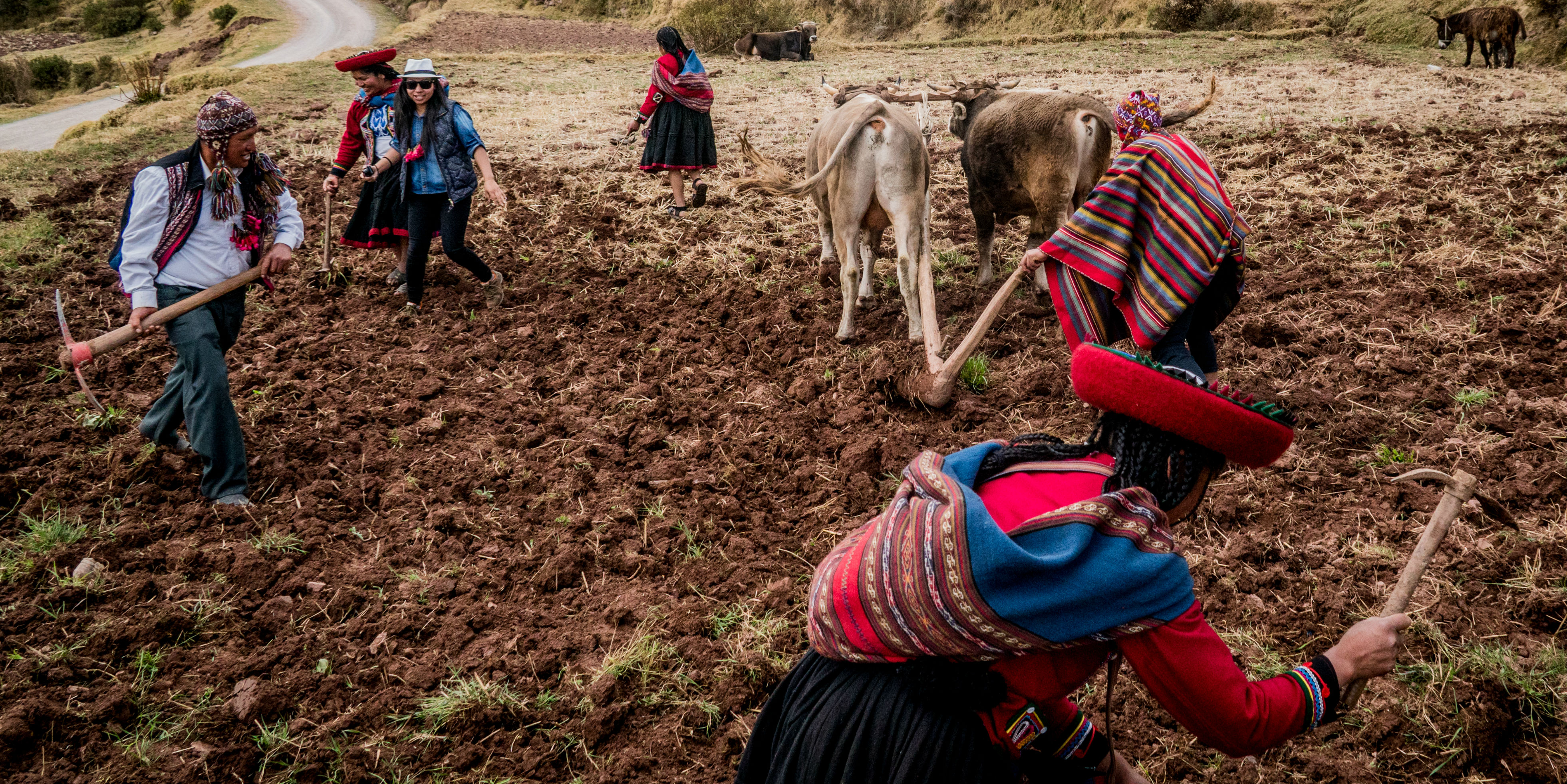 Volunteering in Latin America