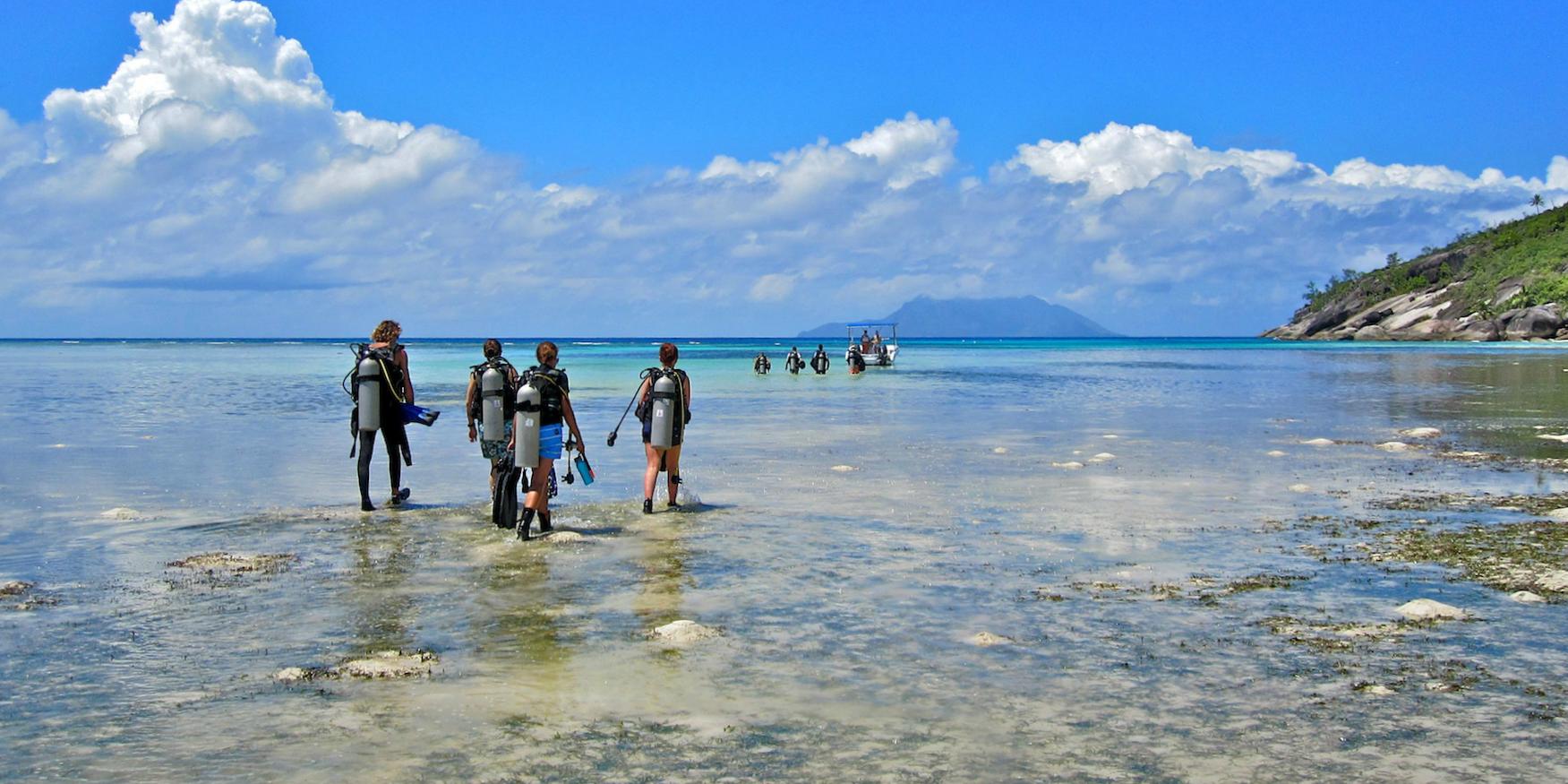 Volunteer abroad in marine conservation.