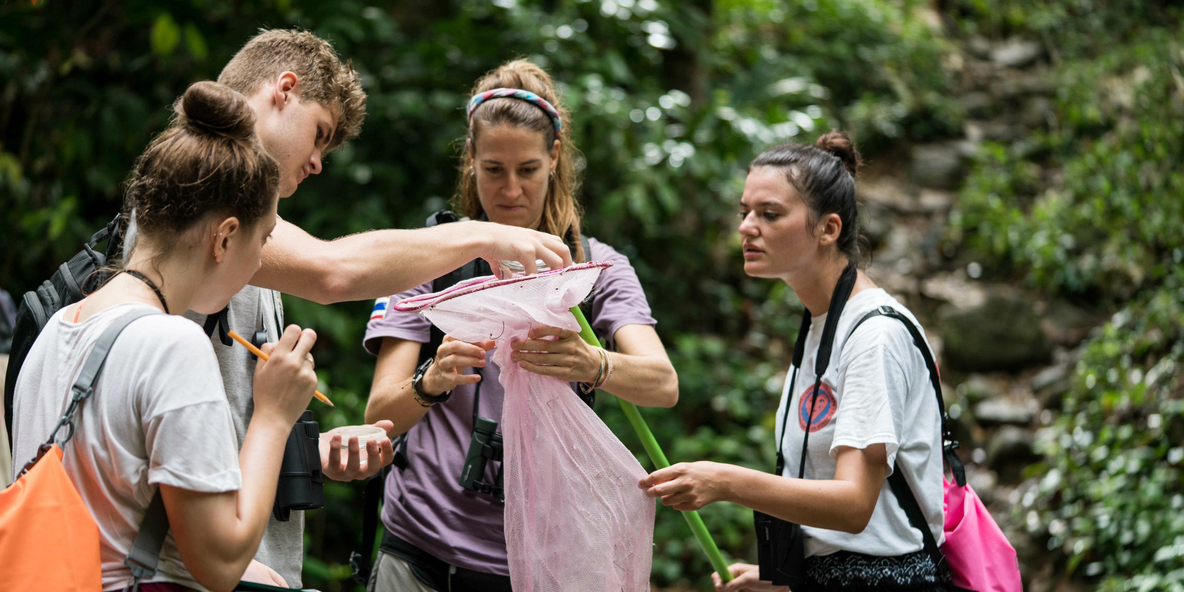 Participants collect data on butterflies in Thailand. The training that takes place on a GVI project is greatly enhanced when approached with a growth mindset.