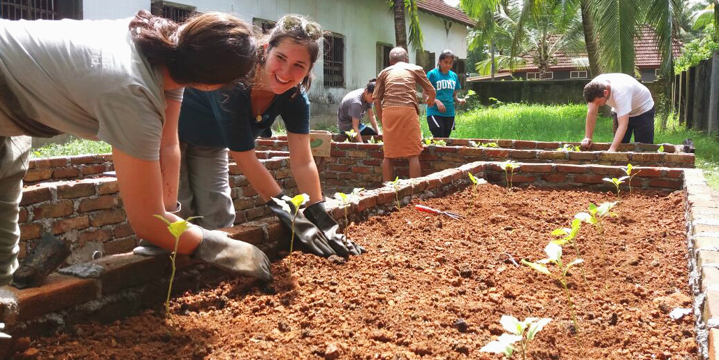 GVI participants maintain plants in a local community garden, as part of under 18 volunteer opportunities abroad.