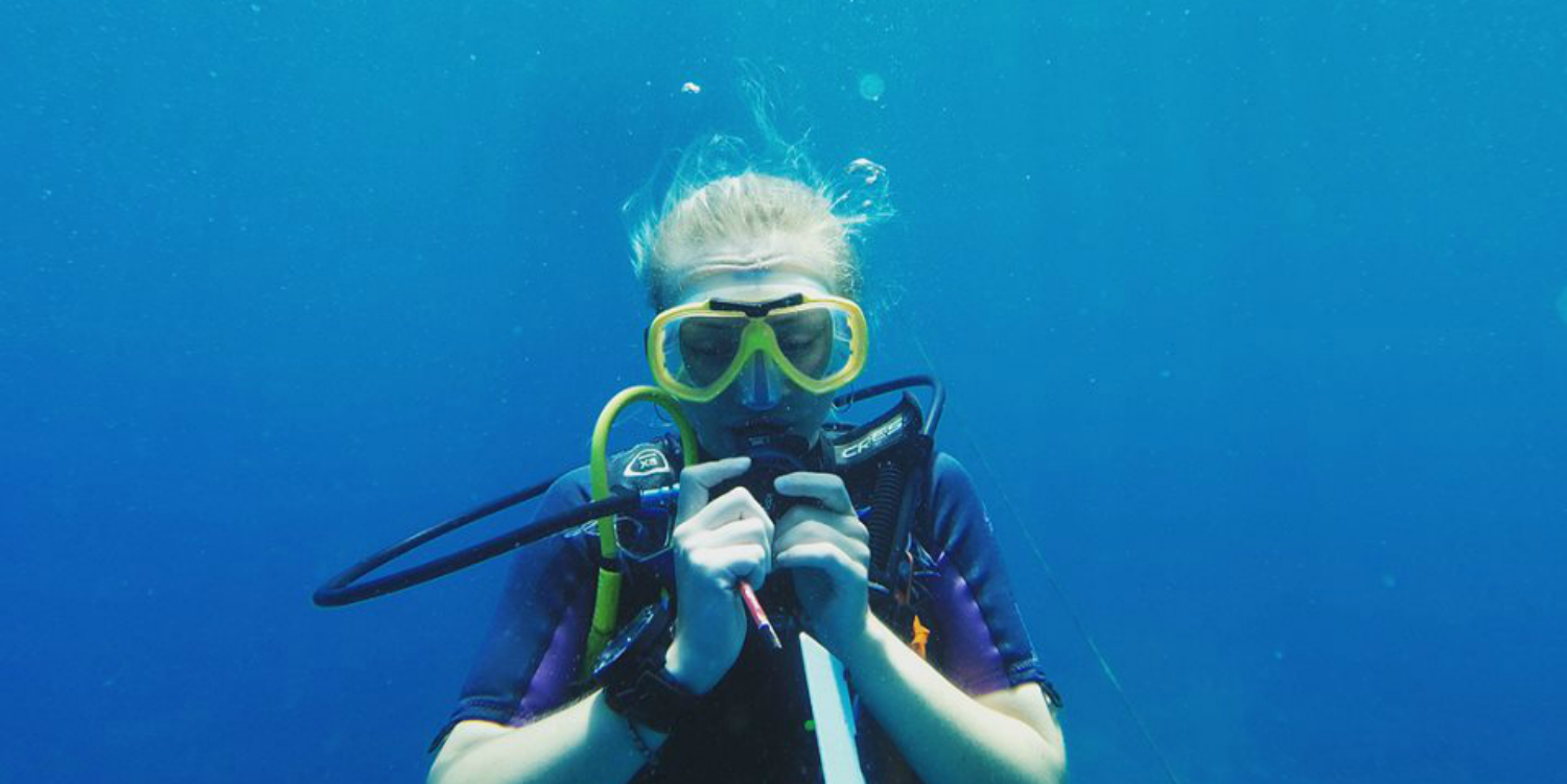 A diver practises using a board underwater as part of their PADI certification training.