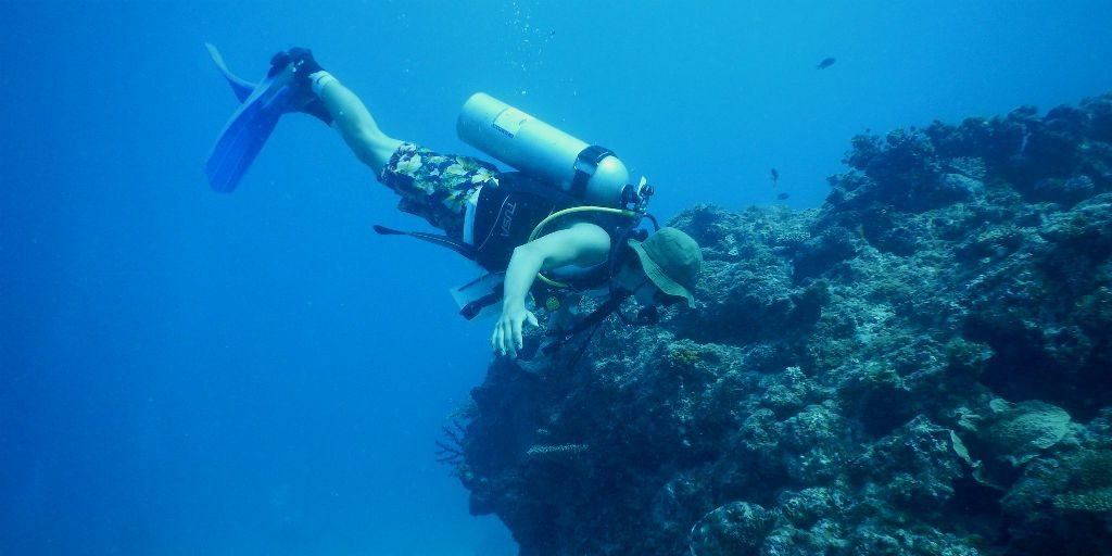 The history of Fiji's marine conservation is at your fingertips while exploring the best snorkeling in Fiji on a GVI volunteering program.