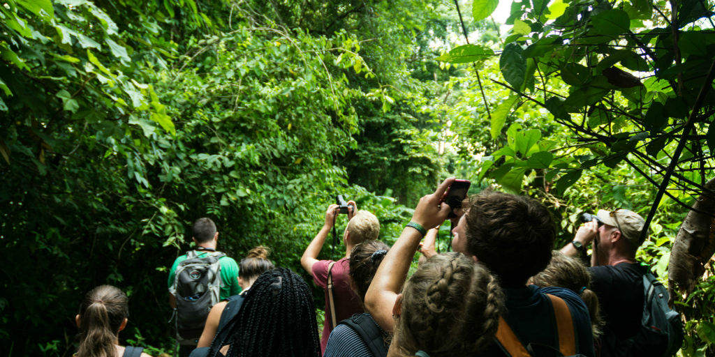 Positive effects of social media are shown here, volunteers in Costa Rica are documenting their experience of the surrounding wildlife.