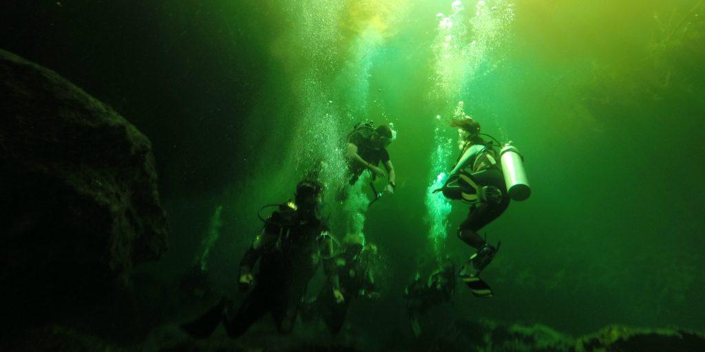 The marine habitat is an amazing sight to see on GVI's marine conservation volunteering opportunities.