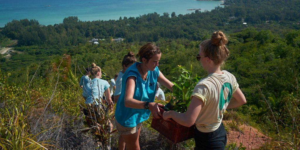 Volunteering abroad allows you to travel with a purpose and reduce your own ecological footprint
