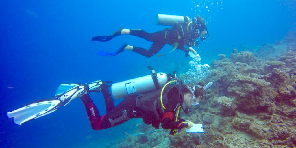Become certified in diving while volunteering in Fiji