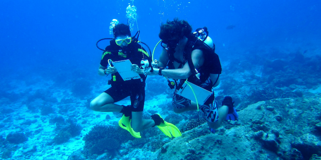 adventure travel scuba divers