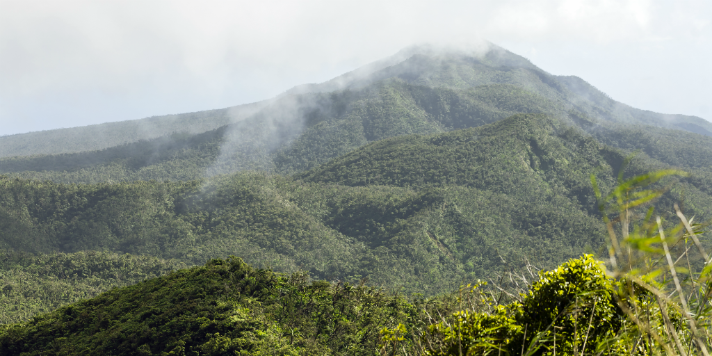 Taveuni Island is a must-see for adventurous Fiji activities.