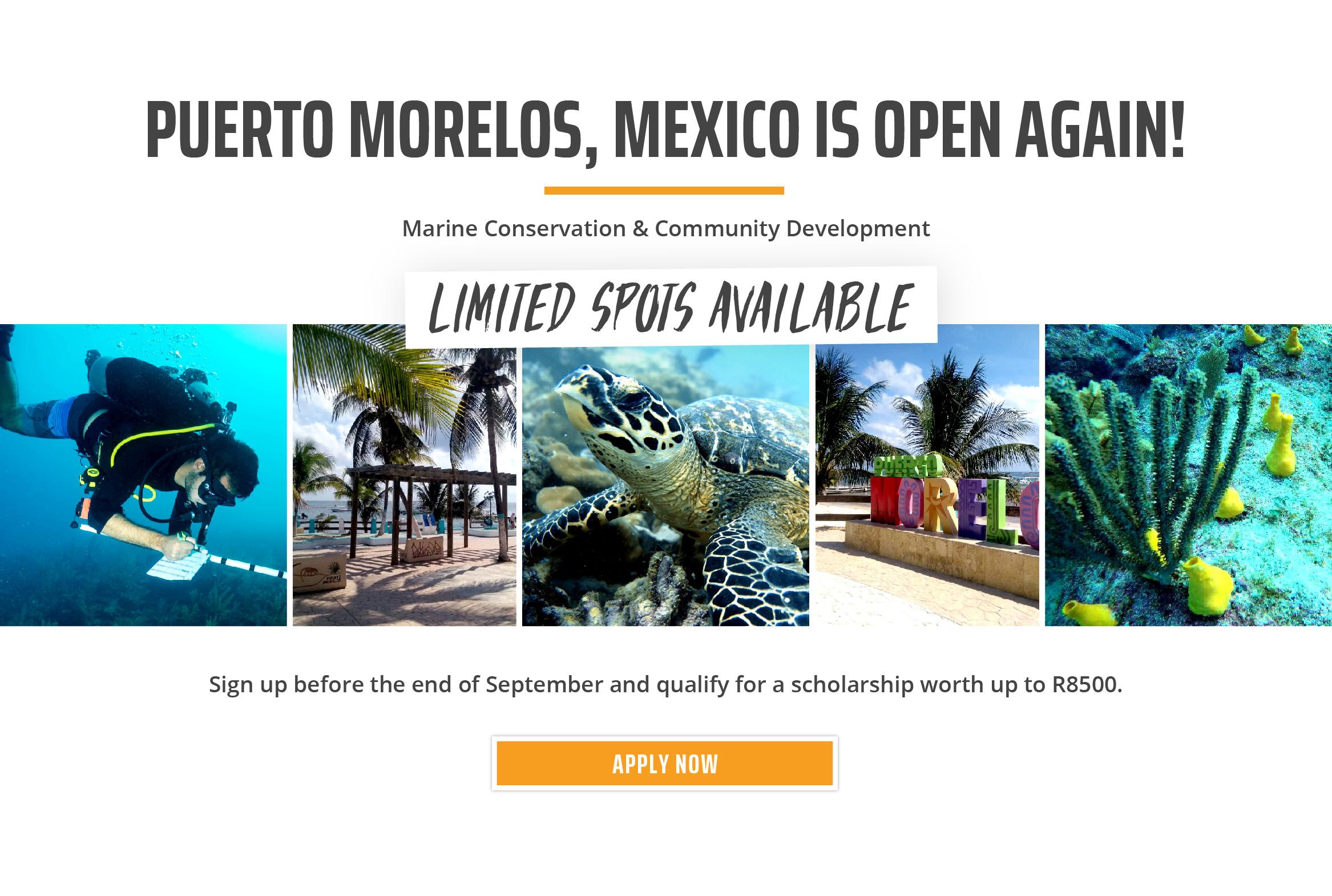 SA Mexico Reopening