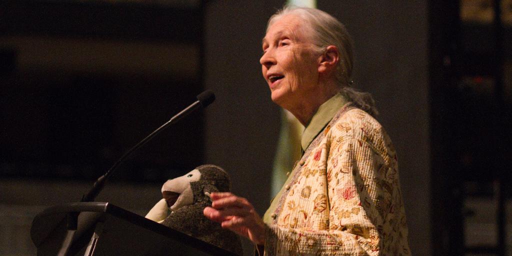Jane Goodall at MU